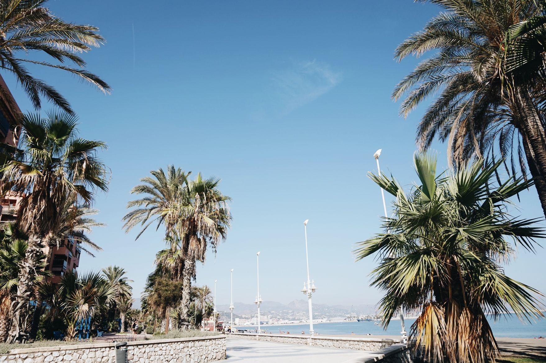 Golden Connexion : 5 days in Malaga